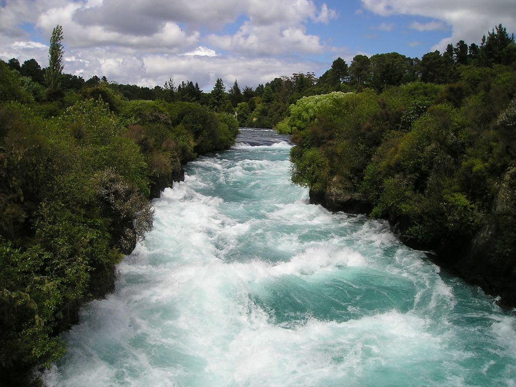 Fast moving river with lush green vegetation