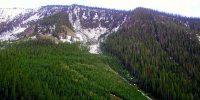2016 Spruce Regeneration Paper