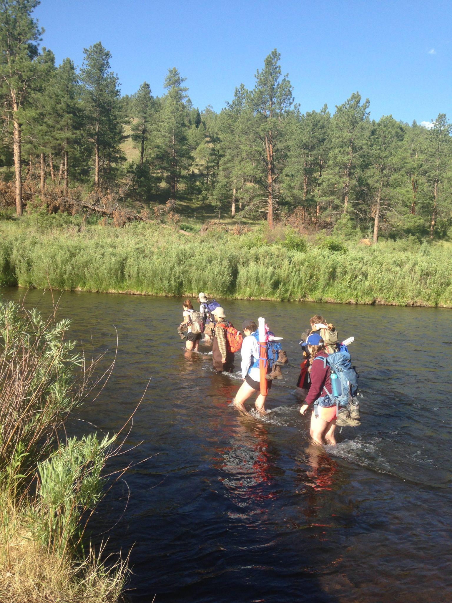 CFRI crew members cross a river to get to a plot